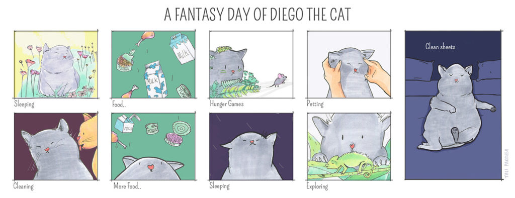 A Fantasy Day Of Diego The Cat