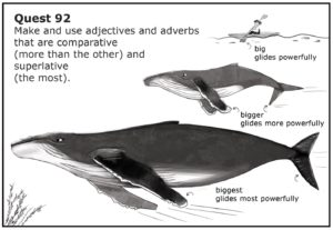 Education Workbook Whales