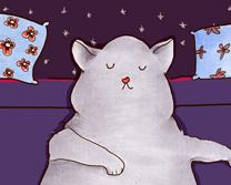 Diego the Cat - Eat Sleep Play
