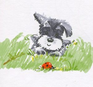 Dog and Lady Bug